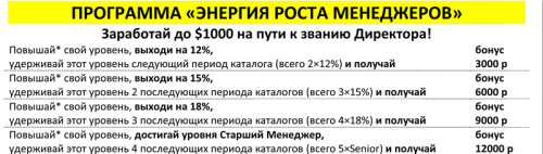 """ПРОГРАММА ОРИФЛЕЙМ """"ЭНЕРГИЯ РОСТА МЕНЕДЖЕРОВ"""""""