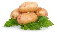 С картофелем